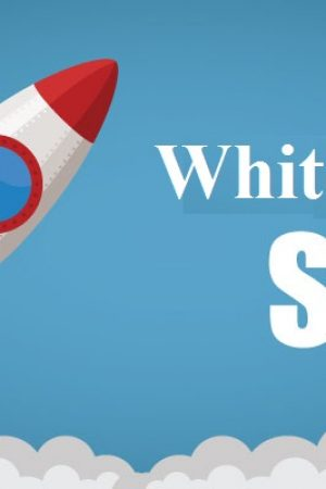 What Is White Label SEO & Why Business Need It ?